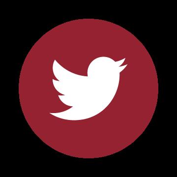 twitter social media icon image
